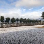 12月、雪、クリスマス、年末。