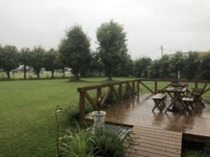 暑いの次は雨、雨、雨しかも大雨。